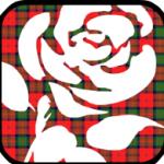 Labour-Hame-rose-150x150 (2)